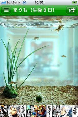 まりも - 水槽で小さな マリモ を育てることができる癒しの育成アプリ2